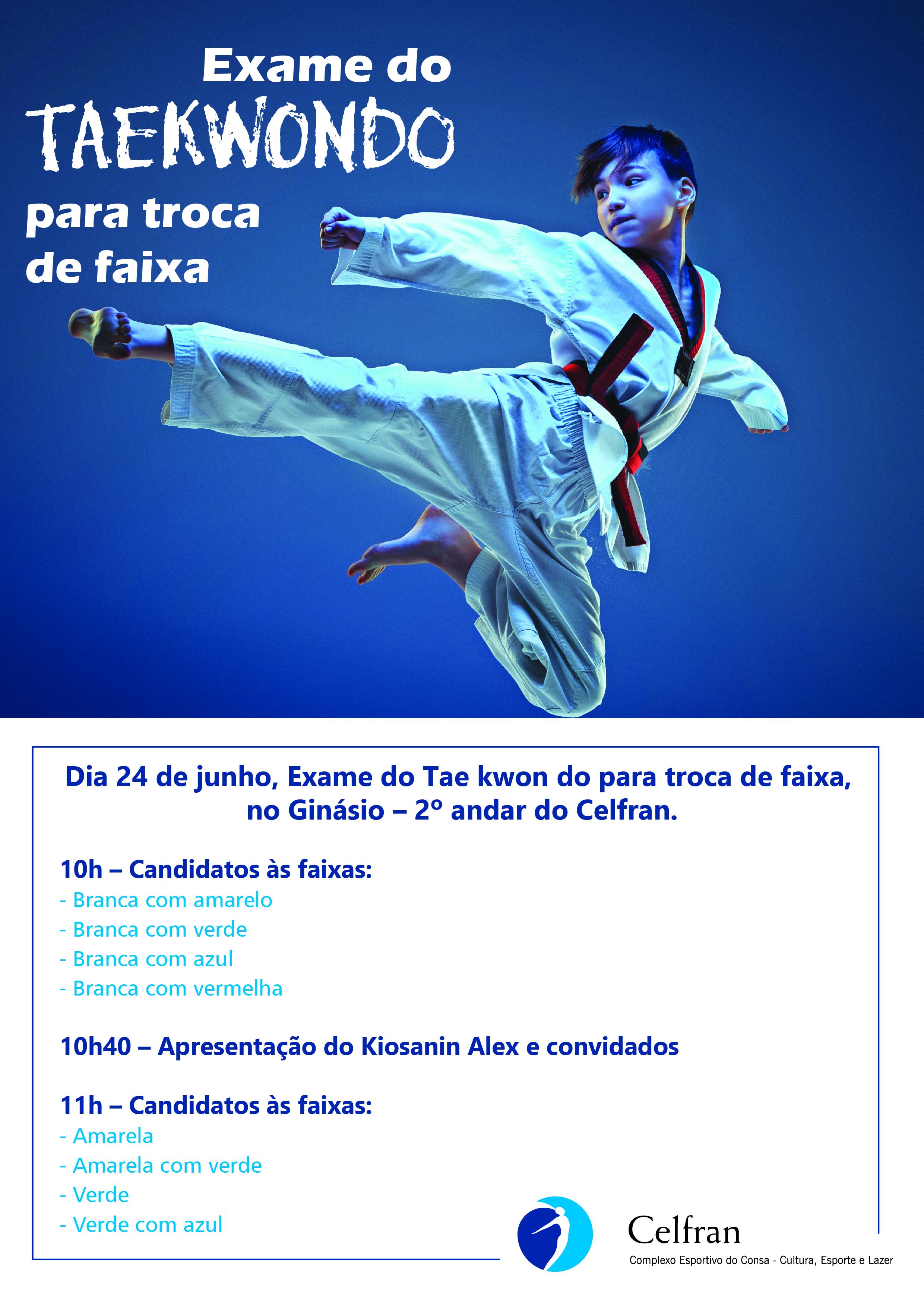 Taekwondo - A4-01