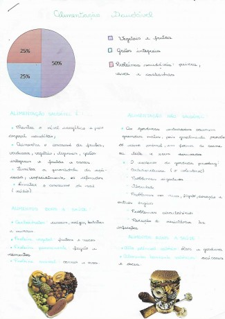 Infografico_GabrielaMoscatelli_StefanieFitere_8C